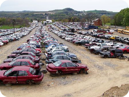 Salvage vehicle yard